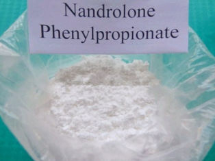 Anabolic Steroids MuscleGain High Pure Nandrolone Phenylpropionate Raw Steroid Powder CAS 62-90-8