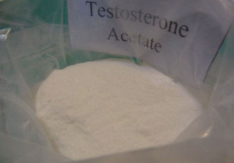 1045-69-8 Muscle Building Steroids Testosterone Acetate For Muscle Gaining